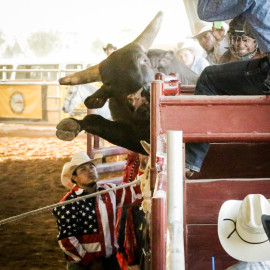 Gilbert Days Rodeo 2014